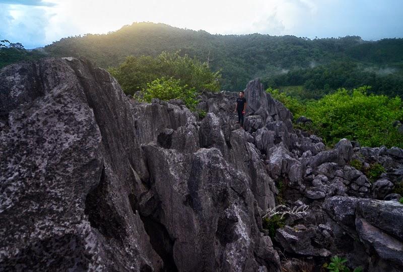 bukit langara 7